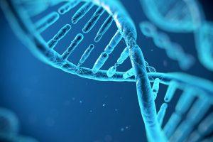 ttos_fragmentacion_DNA_940x627